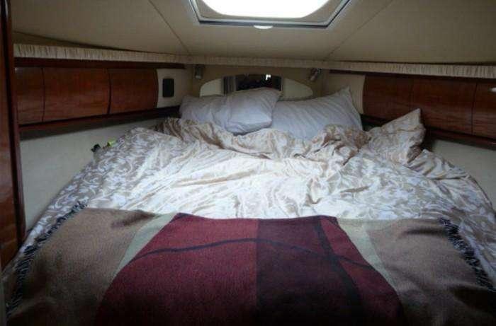 searay-455-sundancer-conundrum-forward-cabin