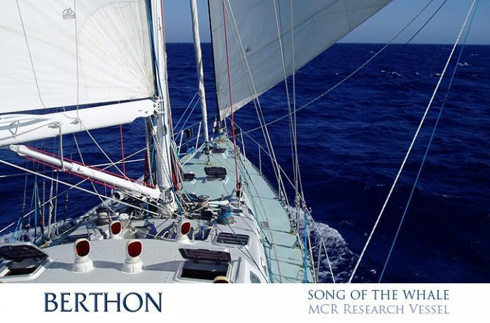 SONG OF THE WHALE sailing