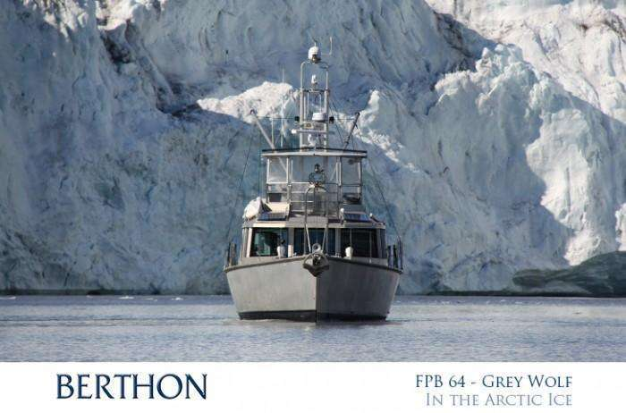 FPB 64 Grey wolf in the arctic ice