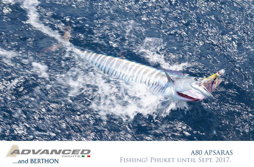 a80-apsaras-17-fishing-phuket-until-sept-2017