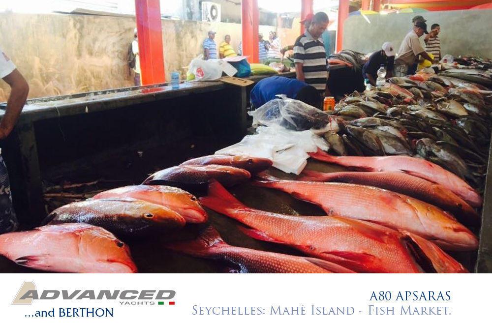 a80-apsaras-6-seychelles-mahe-island-fish-market