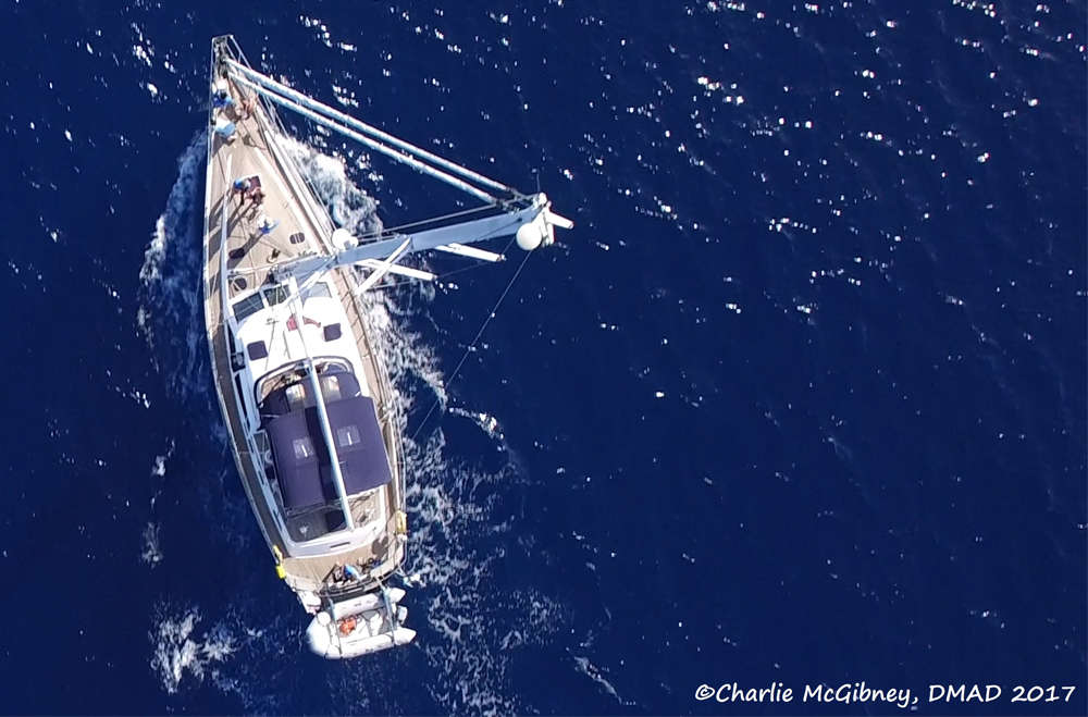 a-marine-expedition-with-discovery-55-chance-discovery-11