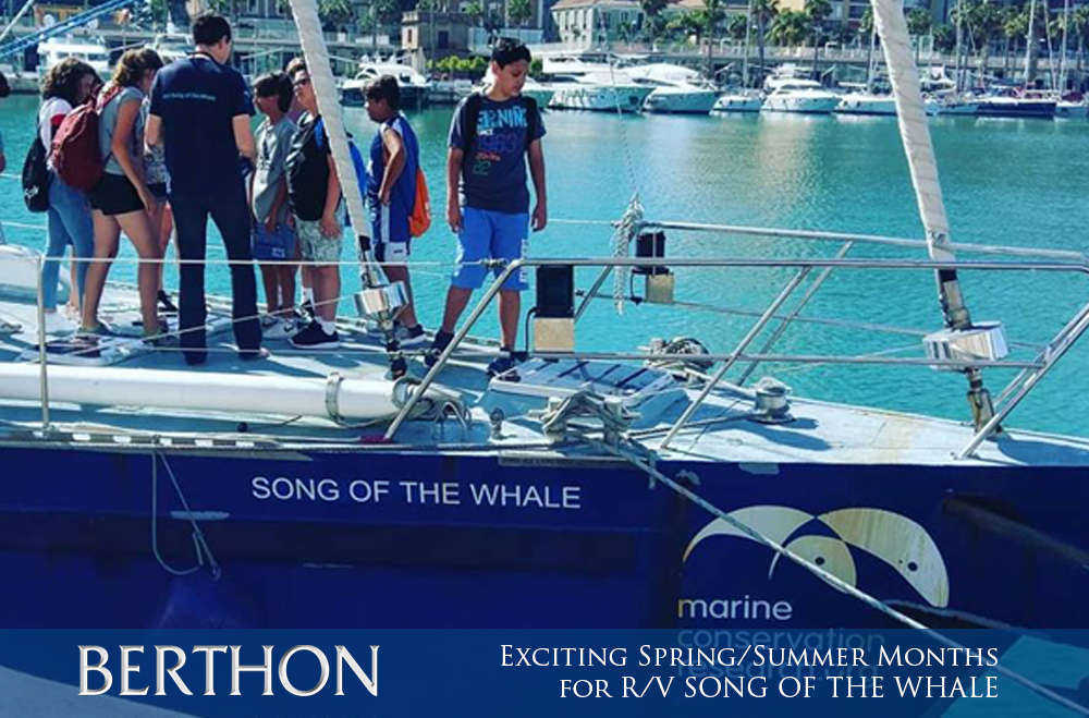 exciting-spring-summer-months-for-r-v-song-of-the-whale-5