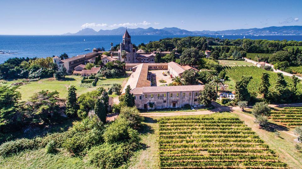 4-the-vineyards-of-lerins-abbey-abbaye-de-lérins-the-île-saint-honorat-mairie-de-cannes-axis-drone