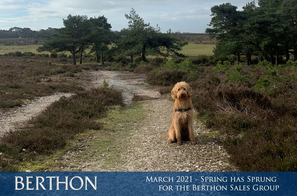 march-2021-spring-has-sprung-for-the-berthon-sales-group-1